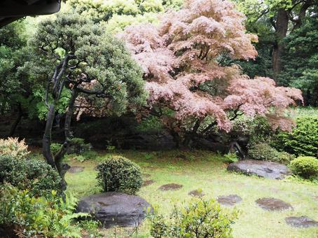 일본 정원의 풍경