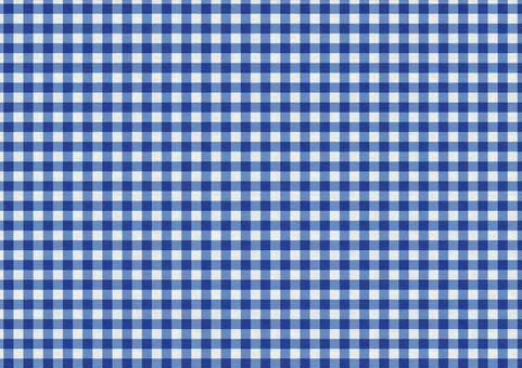 Gingham Check Texture [Campus / Navy Blue]