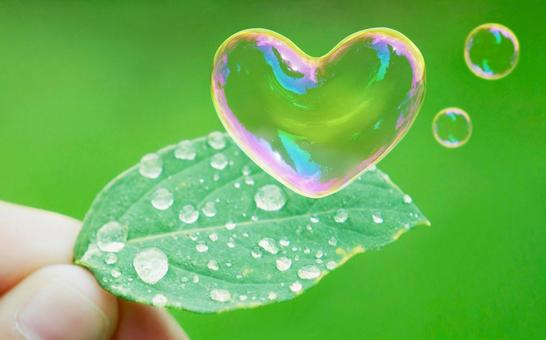 Leaves and drops, Heart's soap bubble