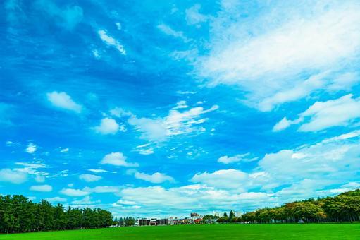 Obihiro Midorigaoka Park, clear sky and lawn All 6 types (5) Search word / turf Creator name / YUTO @ PHOTOGRAPHER