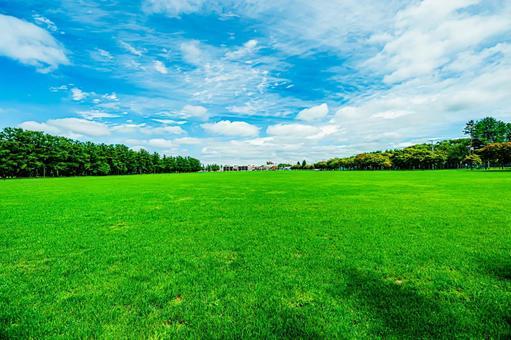 Obihiro Midorigaoka Park, clear sky and lawn All 6 types (6) Search word / turf Creator name / YUTO @ PHOTOGRAPHER