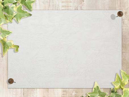 White drawing paper with white wood grain Ivy pinning background material