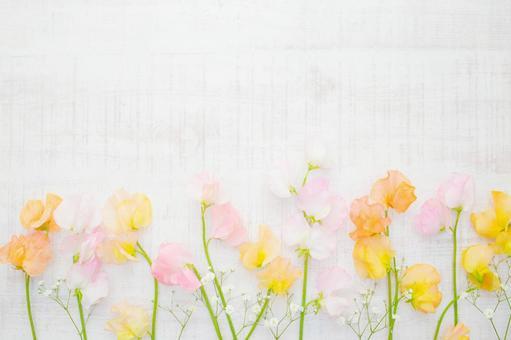 Spring sweet pea frame