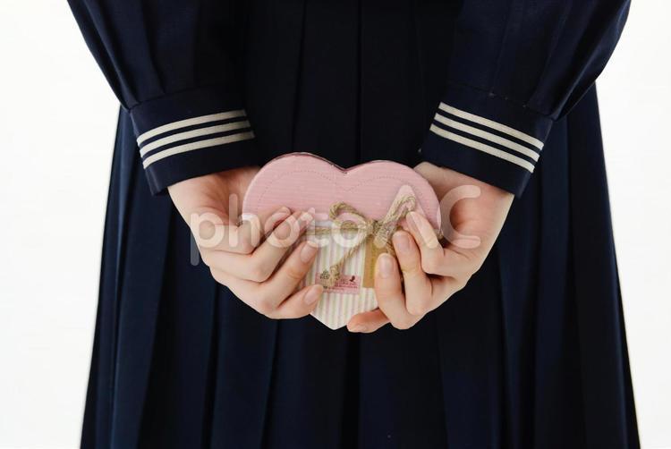 バレンタインチョコを持つ女子中学生の後ろ姿1の写真