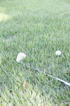 Grass club and golf ball 6