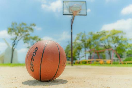 Basketball and park basketball goals
