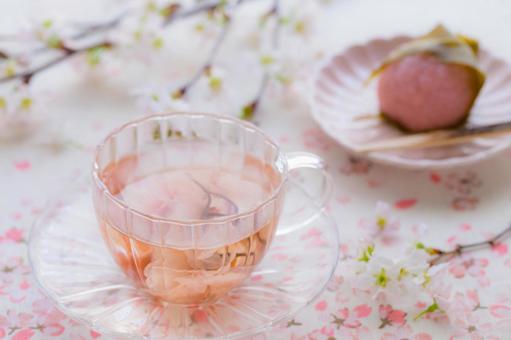 桜茶の写真素材 写真素材なら「写真AC」無料(フリー)ダウンロードOK
