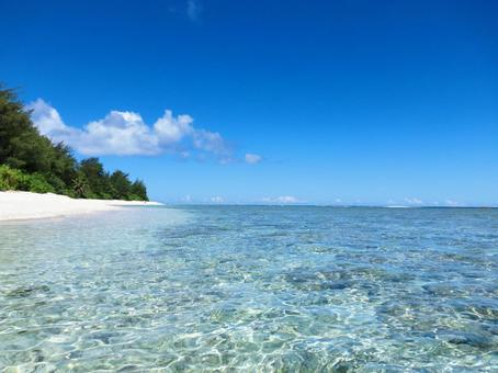 바다에서 보는 하얀 해변