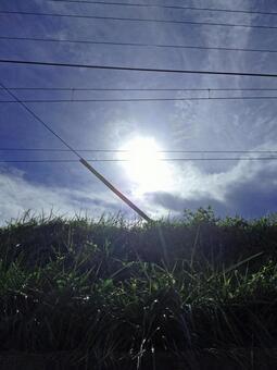 下午的夏天的天空