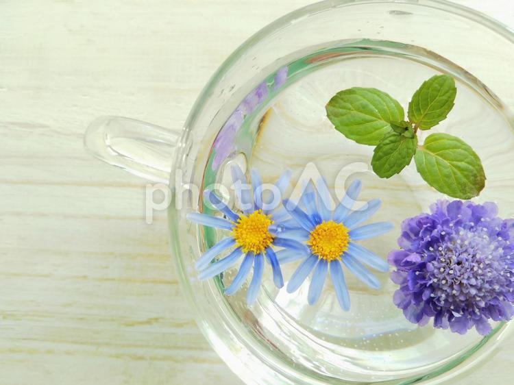 カップに浮いた花とミントの写真