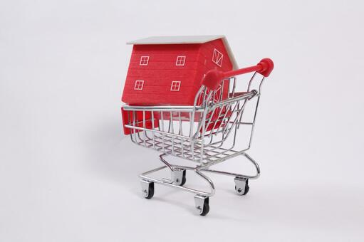 Shopping cart 49