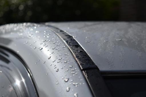 Wet car roof