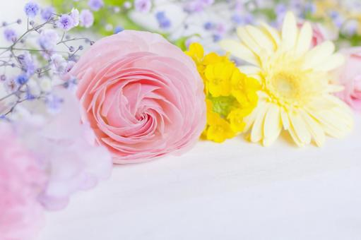 Spring-colored flowers
