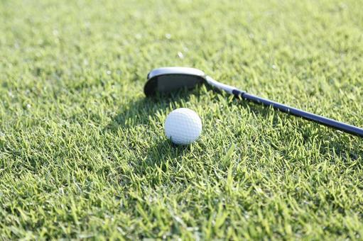 Grass club and golf ball 23