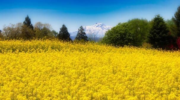 Hokuryu Lakeside Spring Urara
