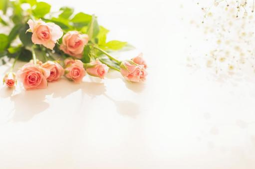 Image of spring morning Pink rose bouquet and gypsophila