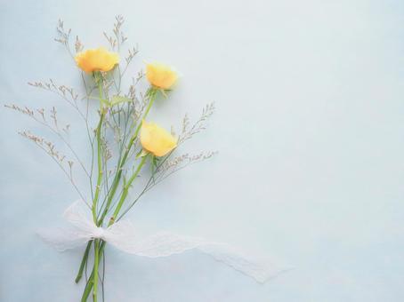 柔和的黃玫瑰
