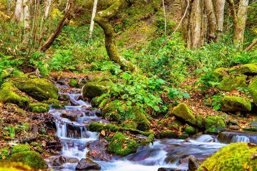 Kitanizawa mountain stream