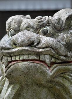 Guardian dog face
