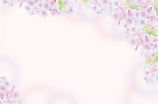 Cherry Blossom Frame 2 (round rounded)