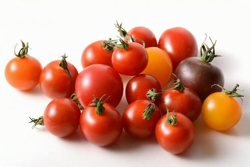 Mini tomato colorful