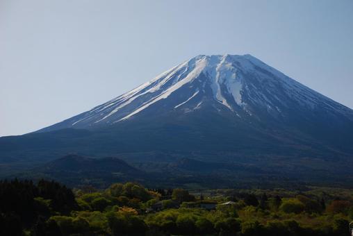 Fuji of grassland
