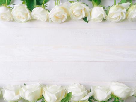白玫瑰木紋背景框架