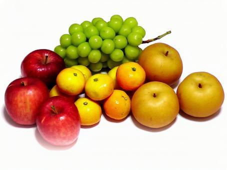 과일 모듬 01