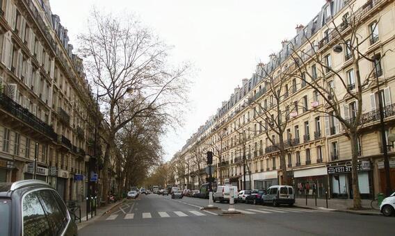 파리의 도시 파리