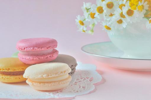Macaron and flower cup (background pink)