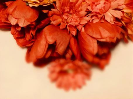 붉은 꽃의 메시지 카드