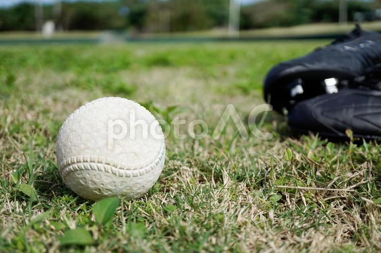 芝の上のボールとスパイクの写真