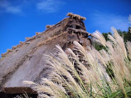 Susuki and thatched roof