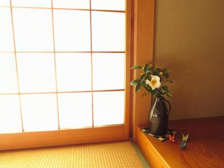 Camellia in a Japanese style room