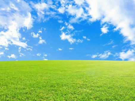 Refreshing blue sky and meadow background material