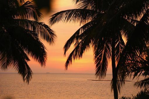 Beach resort 279