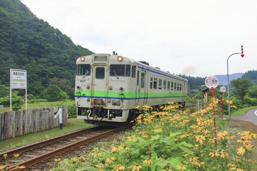 Ebina Line 1 before the waste line 1