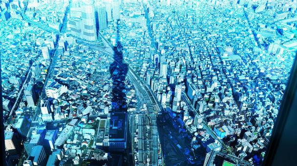 스카이 트리의 실루엣이 비치는 도쿄의 거리 풍경