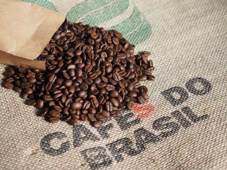 Coffee bean 07