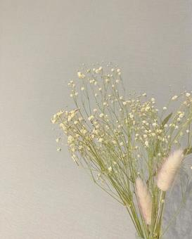 Dried flower