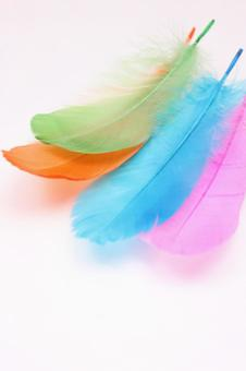 Colorful wings 9