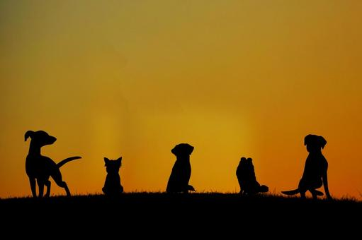 A dog silhouette standing on a hill