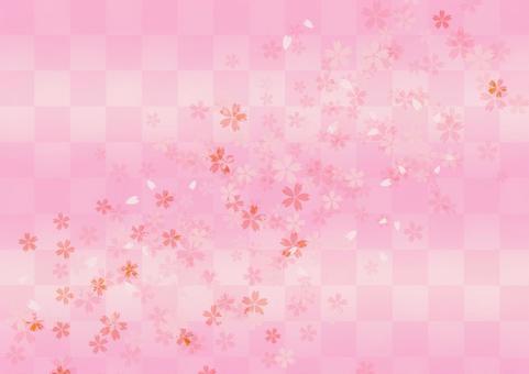 Cherry blossom background _ Pink