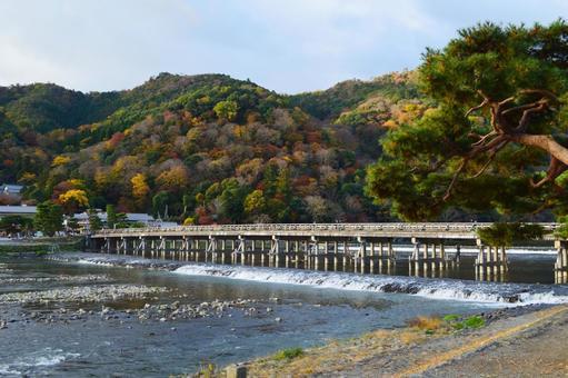 Autumn in Arashiyama, Kyoto 05