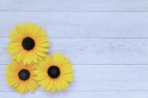 Sunflower summer sunflower flower background frame