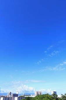 Clouds floating in the summer sky and bright blue vertical