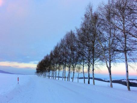 Winter scene of Biei