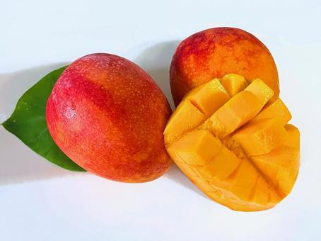 Food material Mango ①