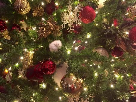 Christmas tree · chic