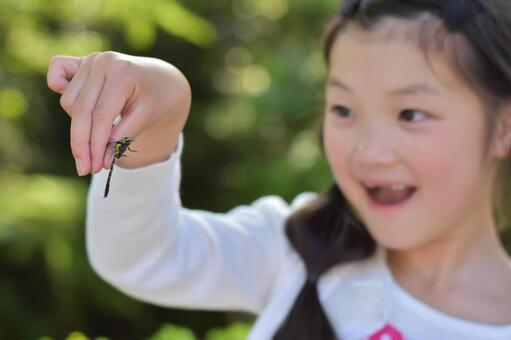 Dragonfly caught by a child